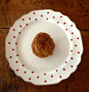 Yummy Cinnamon Pumpkin Muffins!!